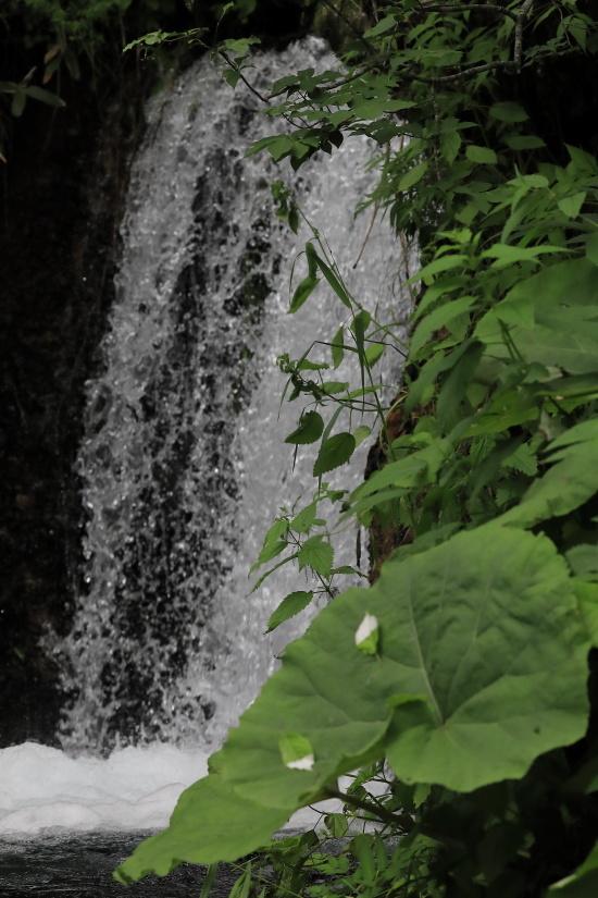 3722 小さな滝