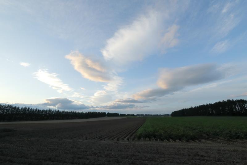 8037 十勝の大地と雲