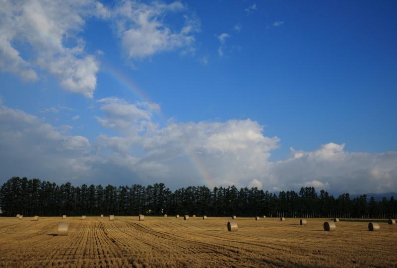 8284 牧草ロールと虹