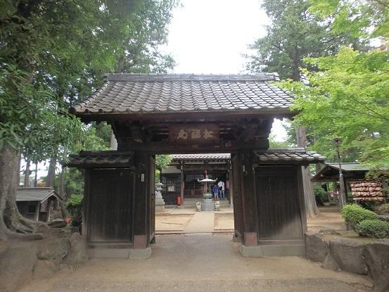 豪徳寺 8