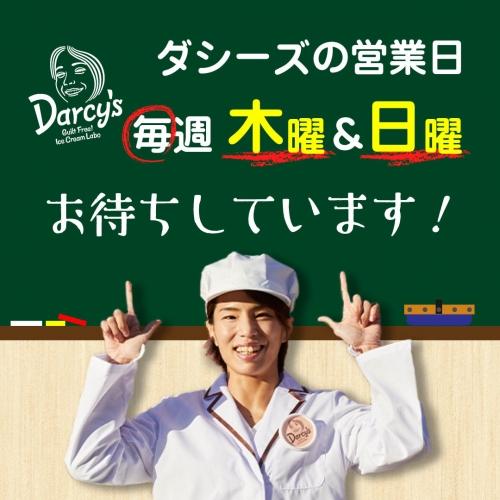 ダシーズ営業日(darcys)