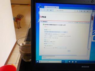 DSCN1564_convert_20190601091600.jpg