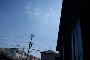 20190811 ほごいぬMT_190811_0260-1