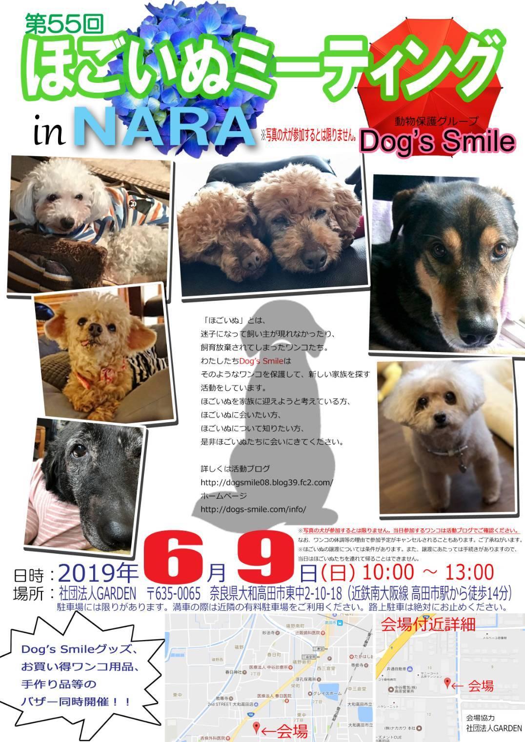 保護 犬 奈良