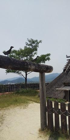 DSC_0527吉野ヶ里遺跡
