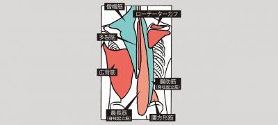 190220st_taikan_b-w1280.jpg