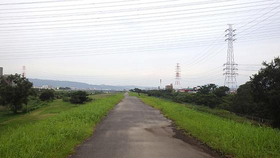 大和川河川敷:2019年7月20日撮影