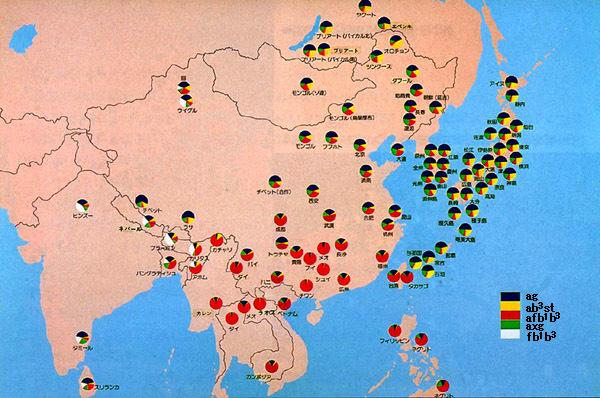nihonjinxmap血液型で頑張って日本人に為り済ます朝鮮人の捏造