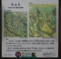 滝山3 (5)