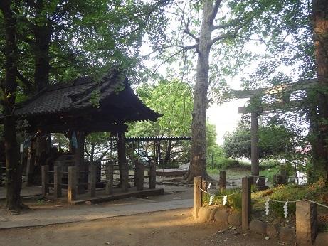 諏方神社4