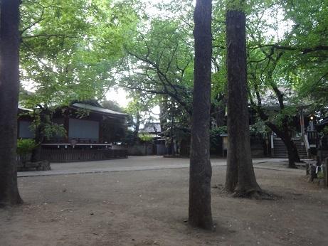 諏方神社6