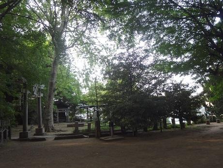 諏方神社8