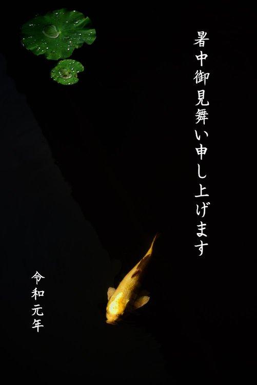 _20190630_072325_takada syotyu