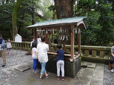 shizuoka2019GW-233.jpg