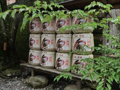 shizuoka2019GW-236.jpg