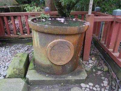 shizuoka2019GW-237.jpg