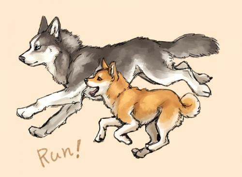 RUN!ss.jpg