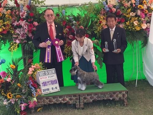 糸大阪連合展7