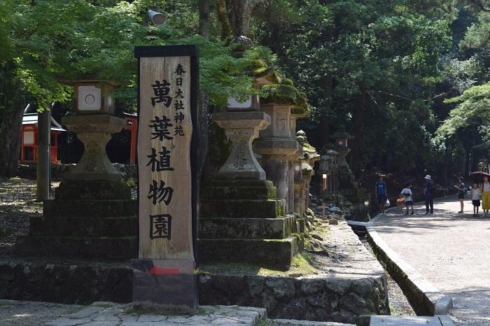 DSC_0009201908奈良