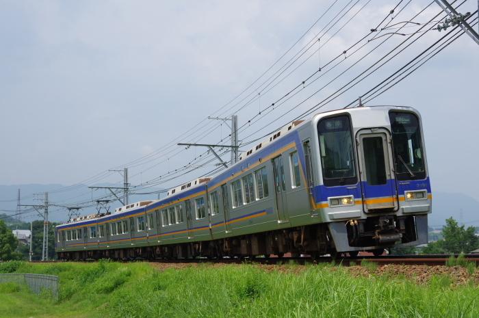 IMGP4905.jpg