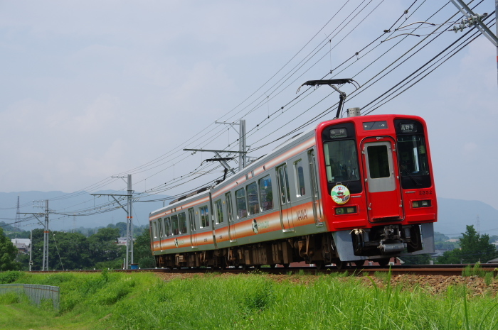 IMGP4941.jpg