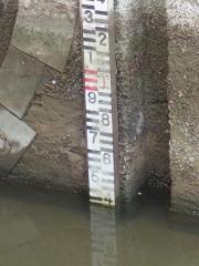 水位33センチ