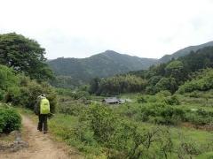 16太融寺はあの山の上