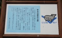 9捕鯨見張り台
