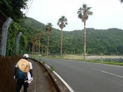 1南国風景