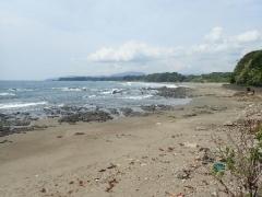 11田野浦海岸