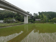 3高知自動車道