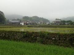 4雨に煙る集落