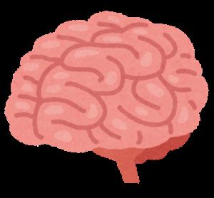 body_brain_nou_20190518193954af5.png