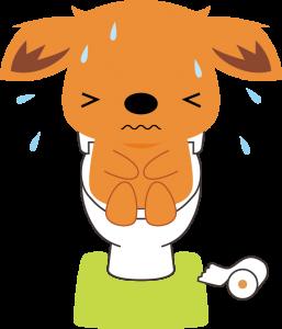 fukutsu.png