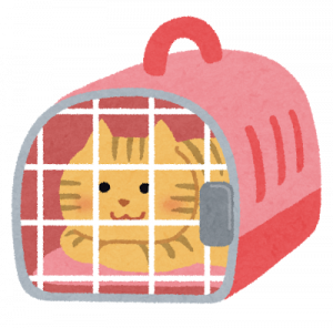 pet_carry_cage_cat_20190515174209d29.png