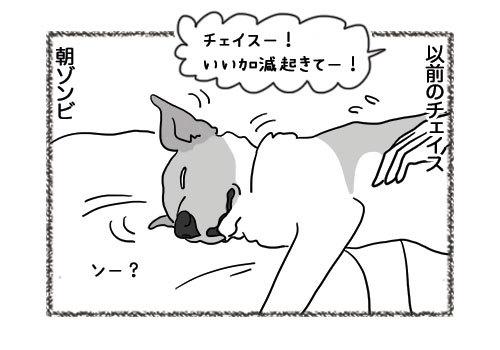 06052019_dog1.jpg