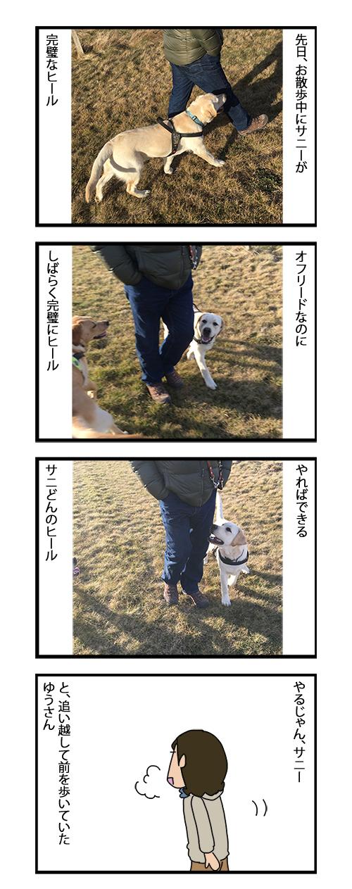 11072019_dogcomic1.jpg