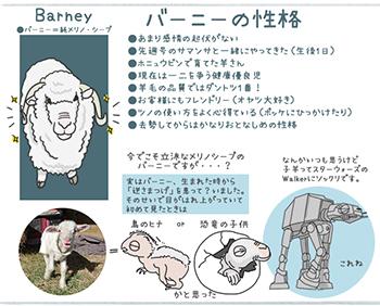 Barney_Profile.jpg