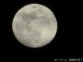 ズームを効かせて月を撮る
