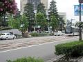朝乃山のパレード2