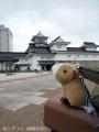 パレード後に富山城を撮る3