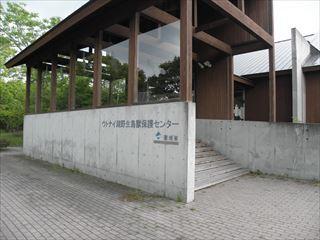 P6080111_R.jpg