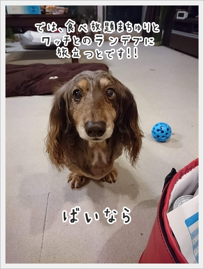 fc2_2019-04-26_01.jpg