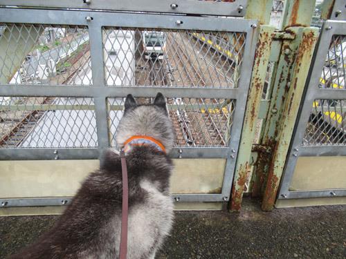 雨上がりの跨線橋