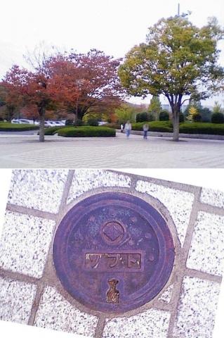 01sano_kyu_soft201211_1