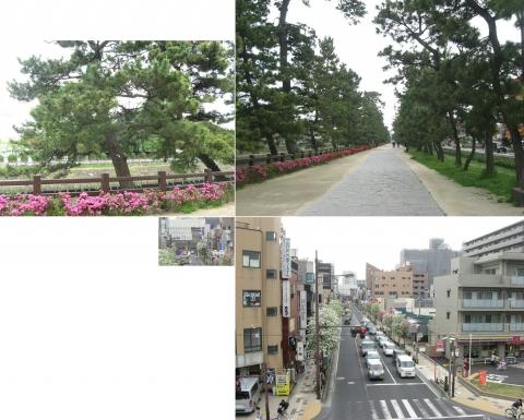 松原団地駅から草加松原を歩く(連結その7)