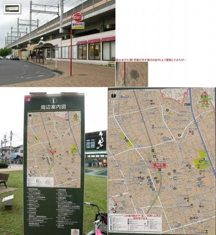 01与野本町駅周辺のバラ(連結その1)