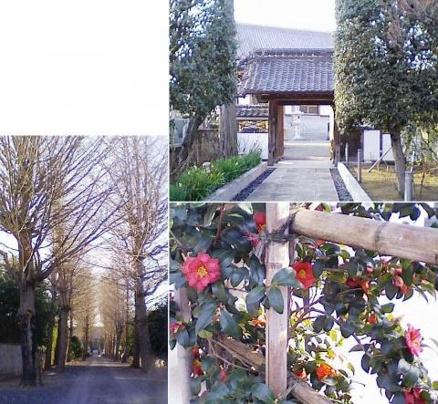 ak_fki_ryusenji201401_03