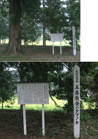 askg-keishokuji201408_01