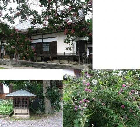 askg-keishokuji201408_07